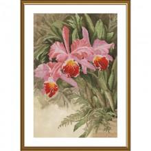 СВ2239 Тропическая орхидея. Новая Слобода. Наборы для вышивания крестиком.