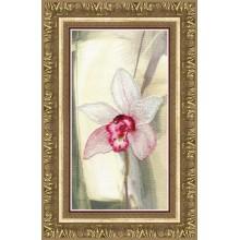 РК-119 Розовая орхидея. Чарівна Мить. Наборы для вышивания крестиком.
