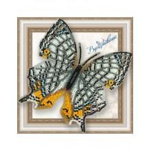 BGP-039 3D Бабочка Цирестис Нивея. Vdohnovenie. Наборы для вышивания бисером.