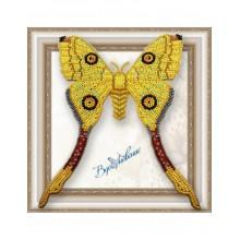 BGP-041 3D Бабочка Мадагаскарская Комета. Vdohnovenie. Наборы для вышивания бисером.