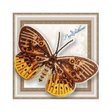 BGP-054 3D Бабочка Eurybia Juturna. Vdohnovenie. Наборы для вышивания бисером.
