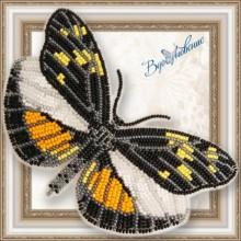 BGP-061 3D Бабочка Dismorphia eunoe desine. Vdohnovenie. Наборы для вышивания бисером.
